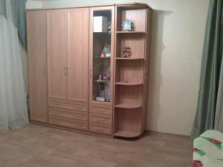 Снять 1 комнатную квартиру по адресу: Саратов г ул Большая Горная 245/265